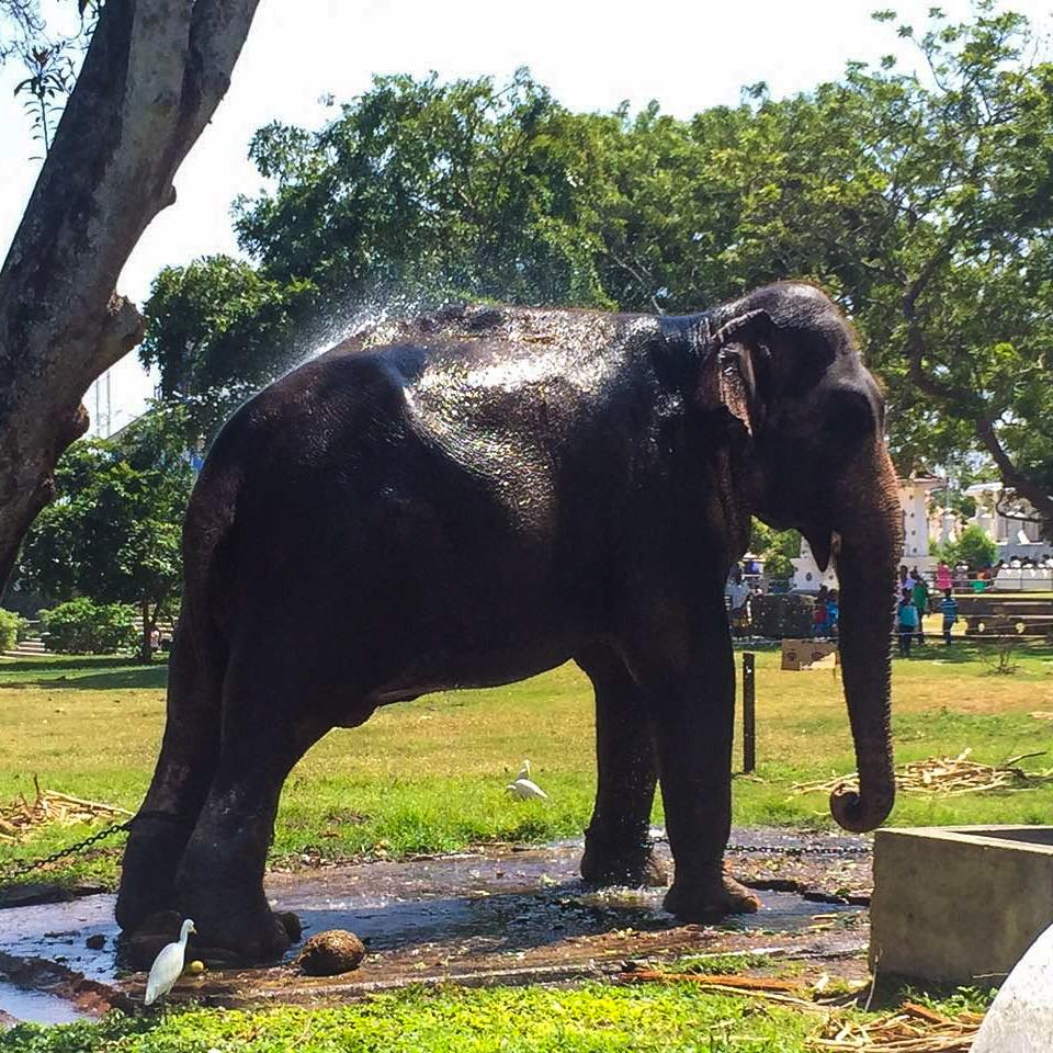 Kalpitiya, Sri Lanka
